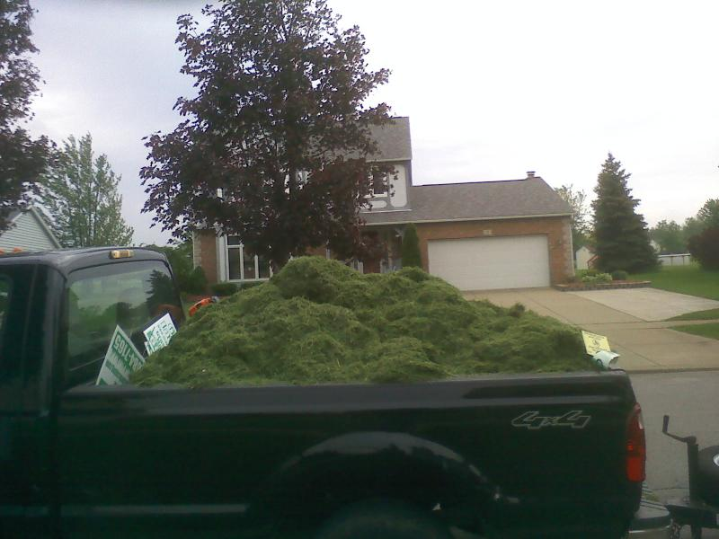 08 ford with grass in it.jpg