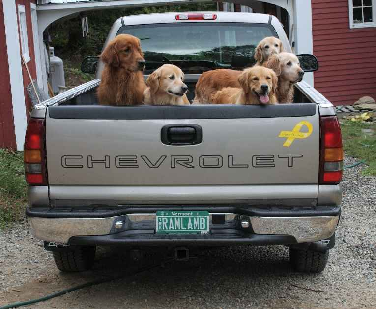 ChevyMedium.jpg