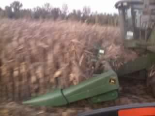 Harvest 013.jpg