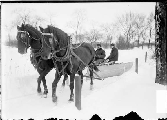 horse_drawn_plow_chicago_march_1903_resized.jpg