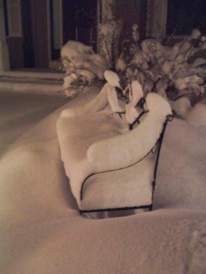 snow 1.2.08  Oshtemo MI.jpg