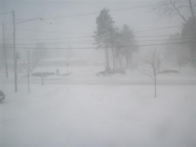snow 2-10-08 004 (Small).jpg