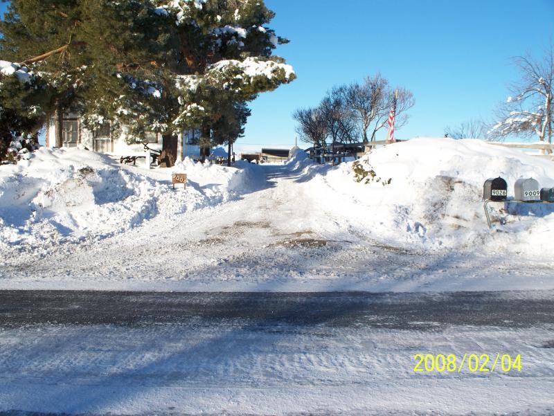 snow   2-4-2008 006.jpg