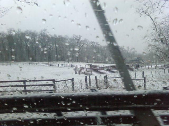 snow115.jpg