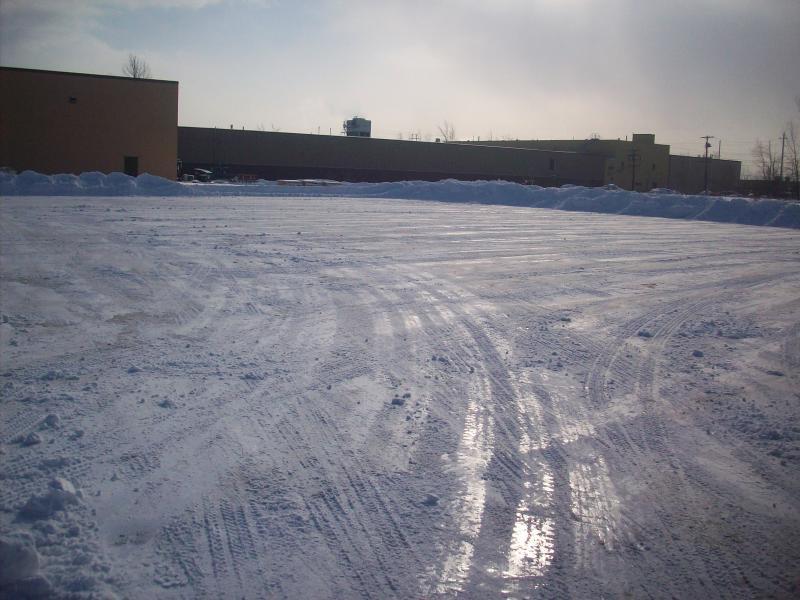 snow2-20-08 016.jpg