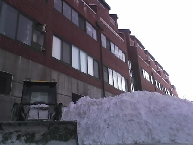 snowpile2.jpg