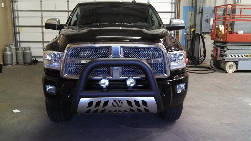 Truck Bull Bar.JPG